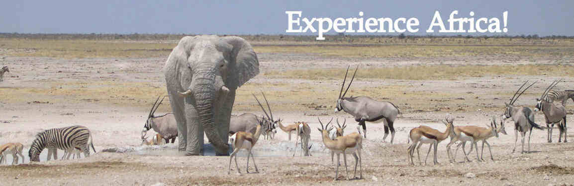 Botswana wildlife safari exploring the best National Parks and Victoria Falls