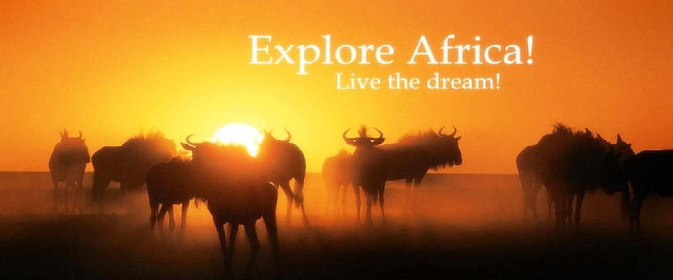 Self-drive Safaris in Namibia - Gateway Africa Safaris