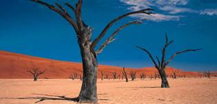 The majestic red dunes of the Namib desert at Sossusvlei