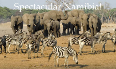 Affordable small group wildlife camping safaris and lodge tours to Etosha National Park
